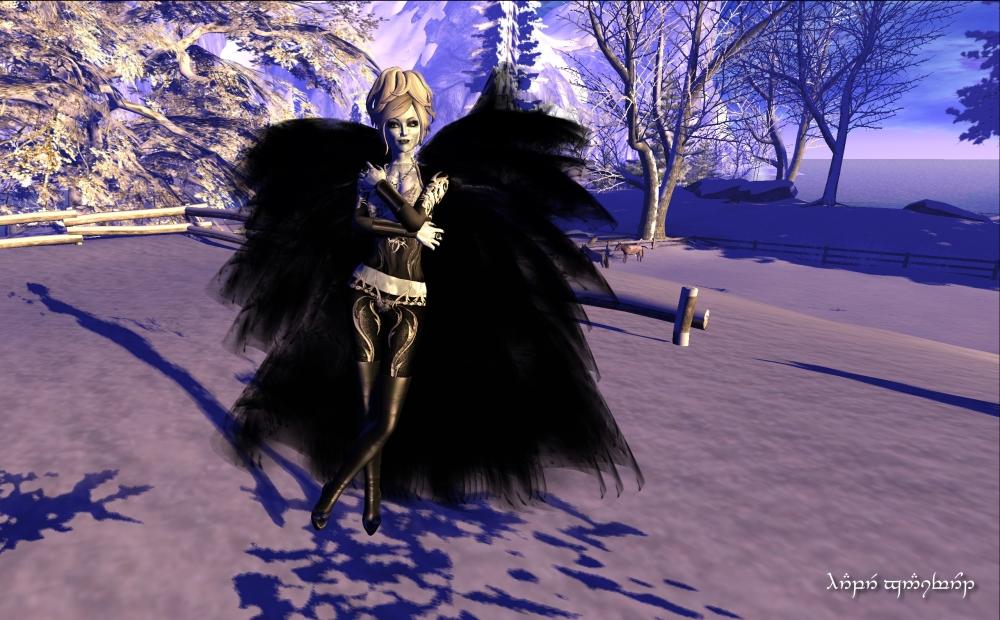 Black Ice 2