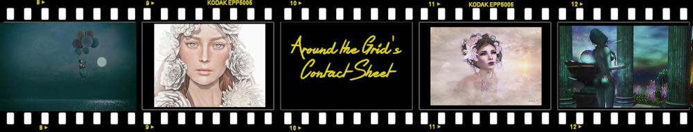 Contact Sheet header