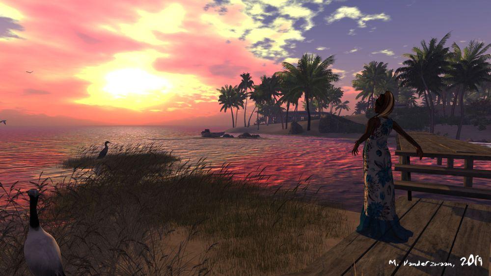 Salt Water Sunset | Around the Grid